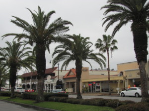 Venice Avenue