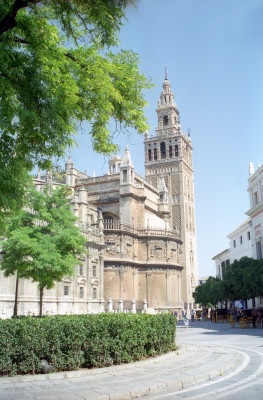 Cathedral & Giralda of Seville