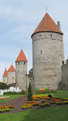 Medieval Walls & Towers