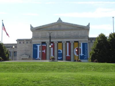 """Museum containing """"Sue"""""""