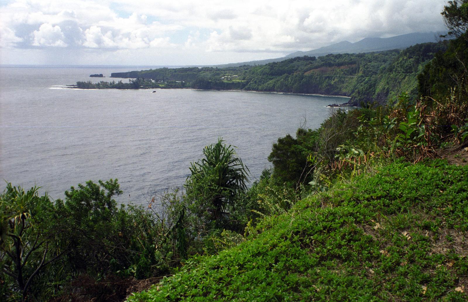 Scenic Coastal Drive