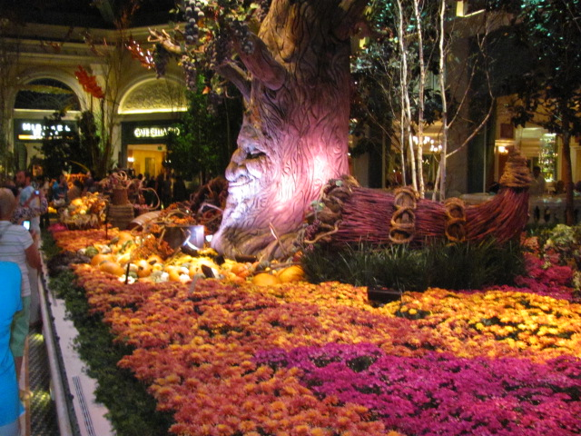 Bellagio Gardens