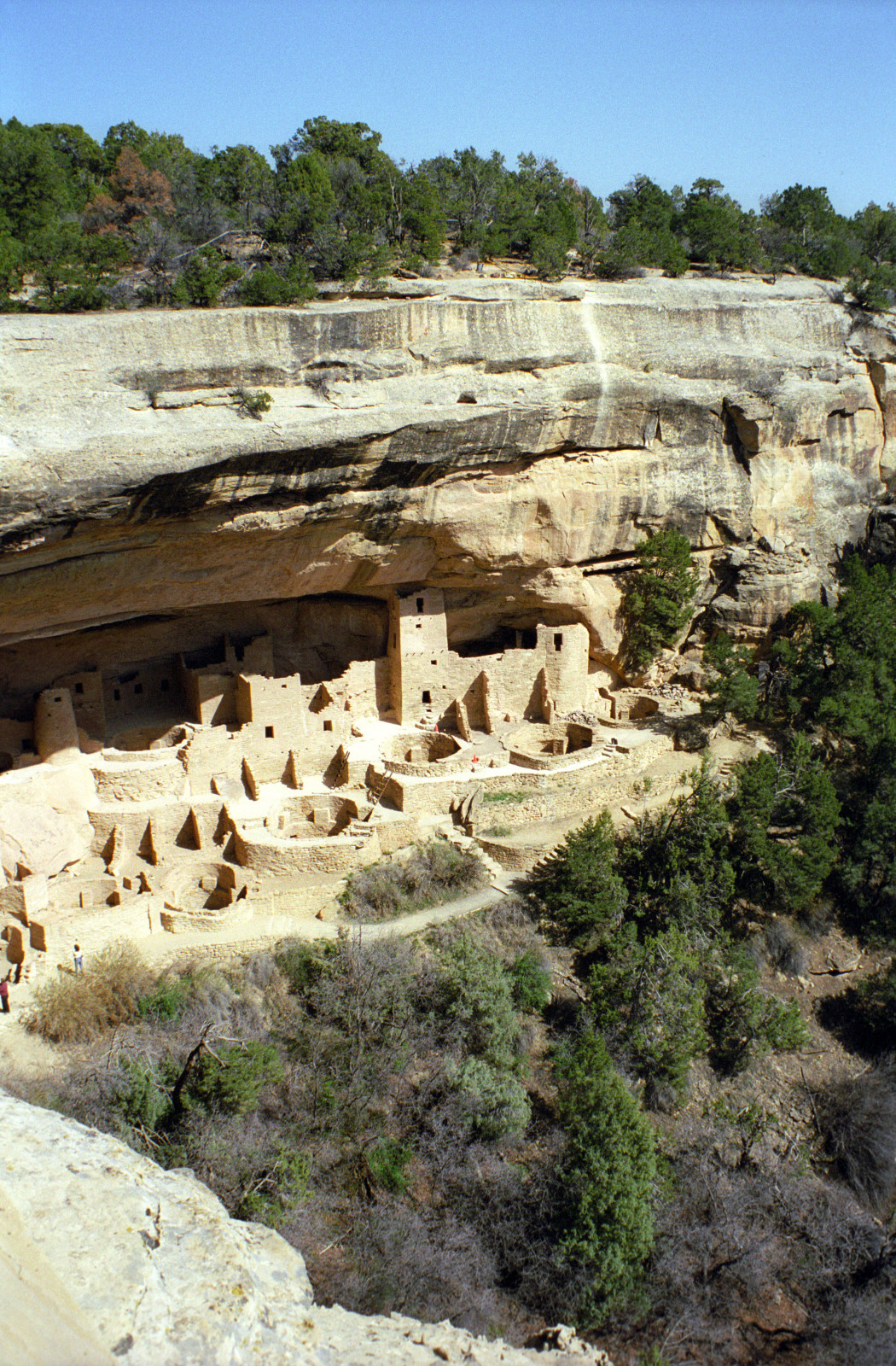 mesa verde national park lesbian personals Mesa verde national park's best 100% free lesbian dating site connect with other single lesbians in mesa verde national park with mingle2's free mesa verde national park lesbian personal.